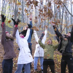 Sugar Ridge Fall Leaves Retreat