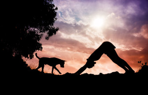 31763361 - man silhouette doing yoga with dog nearby in gokarna, karnataka, india
