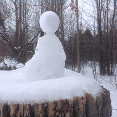 snow meditator
